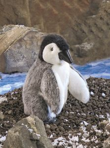 Baby Emperor Penguin Hand Puppet  |  Folkmanis