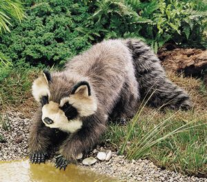 Large Raccoon Hand Puppet  |  Folkmanis