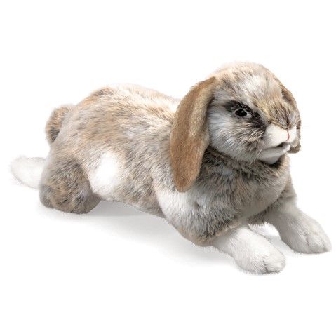 Holland Lop Rabbit  |  Folkmanis