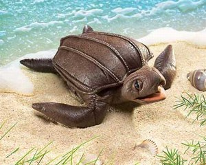 Leatherback Sea Turtle Hand Puppet  |  Folkmanis