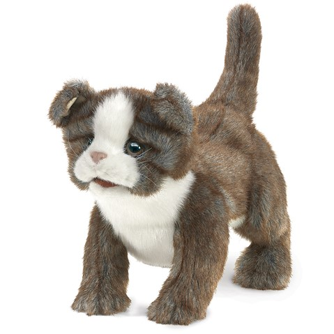 Scottish Fold Kitten Hand Puppet  |  Folkmanis