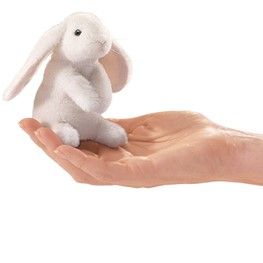 Mini Rabbit, Lop Eared