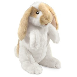 Rabbit, Standing Lop