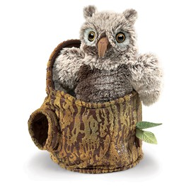 Owlet In Tree Stump