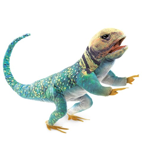 Collared Lizard Hand Puppet  |  Folkmanis