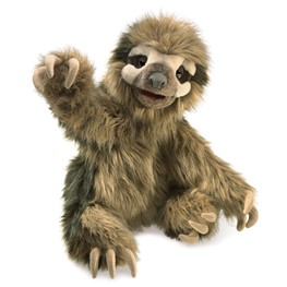 Sloth, Three-Toed