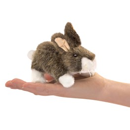 Mini Rabbit, Cottontail