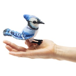 Mini Jay, Blue